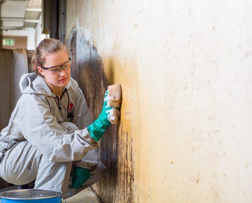 Finnpro.nl | Drytech functionele coatings | BioRid coating | Tikkurila